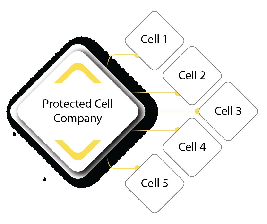 PCC_diagram-01